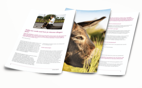 Een impressie van het ezelmagazine van Ezellogica 2020-1
