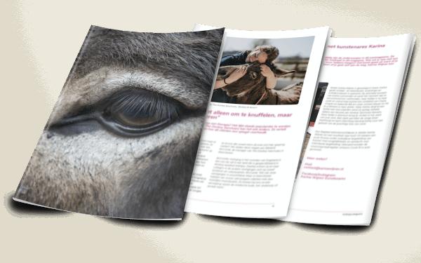 Een impressie van het ezelmagazine van Ezellogica 2020-2