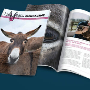 Ezelmagazine van Ezellogica editie 2020-2