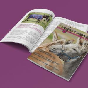 Ezelmagazine Ezellogica 2021-1